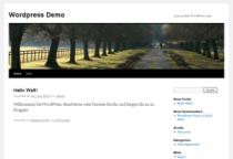 Screenshot of the blogging system WordPress.