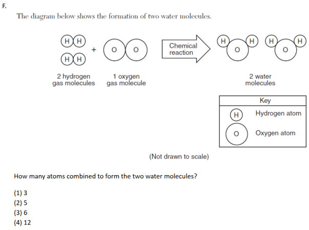 TASC Science – Detailed Description and Sample Items for Physical