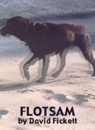 Read a Short Story | Flotsam