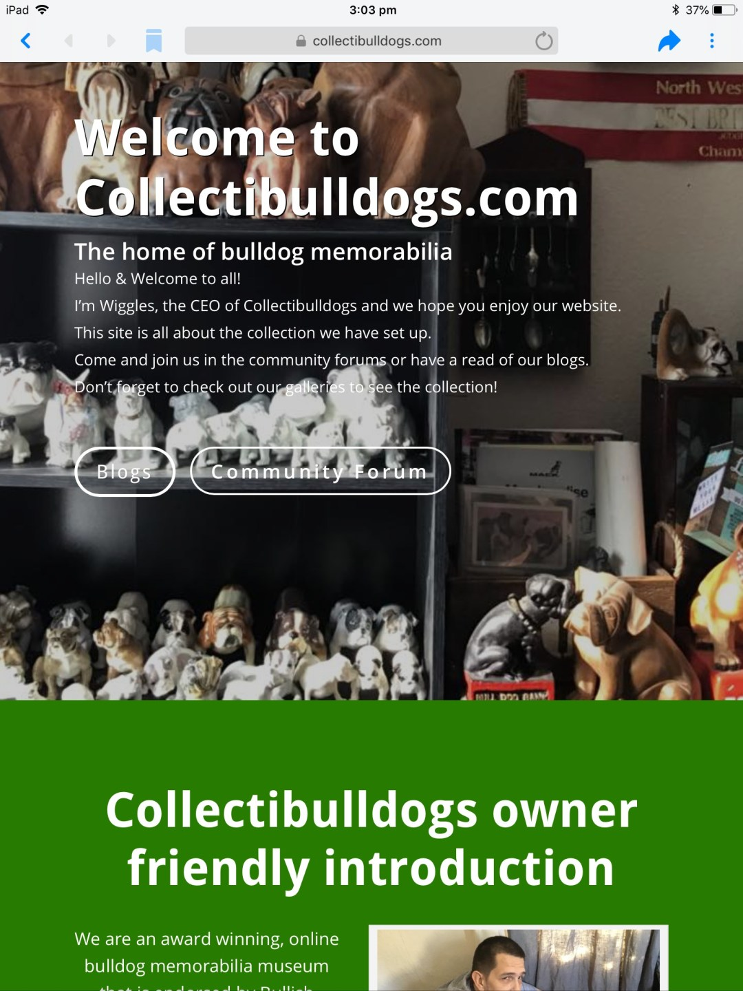 Collectibulldogs antiques new homepage