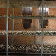 Ossements humains à Ntarama