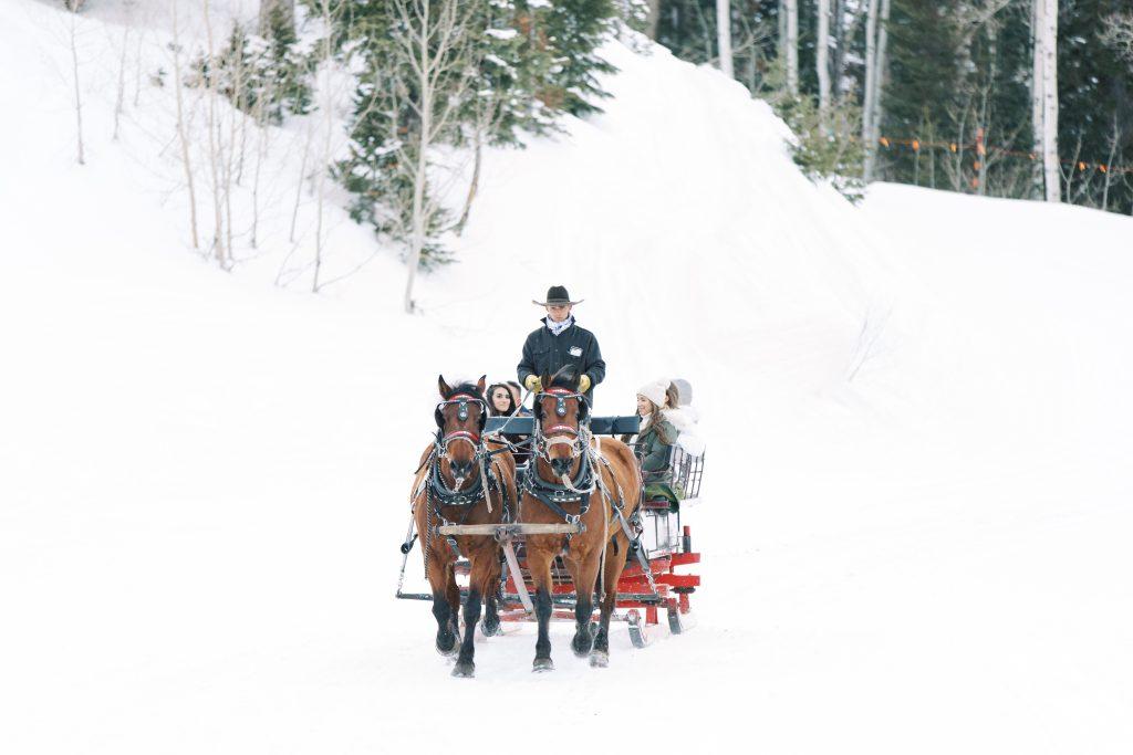 Stein Eriksen Lodge Horse Drawn Carriage Ride