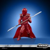 STAR WARS THE VINTAGE COLLECTION 3.75-INCH EMPORER'S ROYAL GUARD Figure - oop (5)