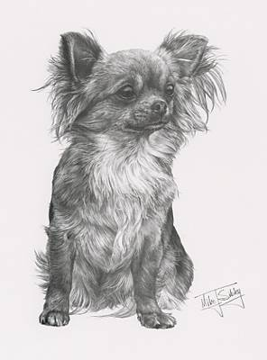 chihuahua coloring pages online coloring