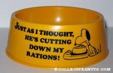 Snoopy Yellow Dog Dish