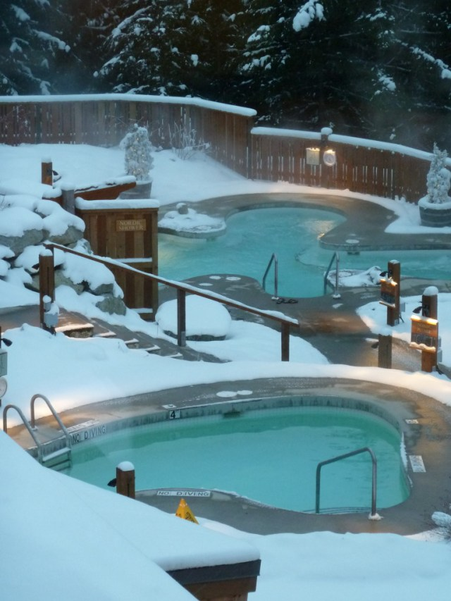 Pools in the Snow - Colleen Friesen