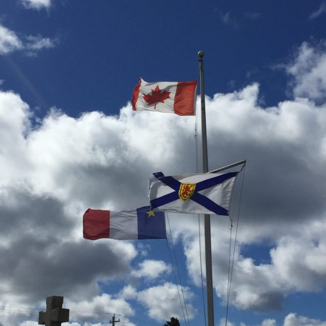 Flags in the Wind - Colleen Friesen