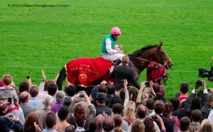 """Workforce"" is the winner of the 2010 Qatar Prix de l'Arc de Triomphe"