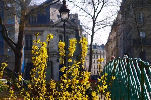 Spring along Boulevard Richard Lenoir