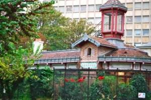Menagerie, building behind Ibis-Scarlet Ruber, le Jardin des Plantes, Paris