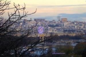 Ferris wheel Place de la Concorde window Musee Homme