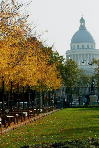 LuxembourgGardens_ColleensParis_Pantheon_Leaves_P2800734