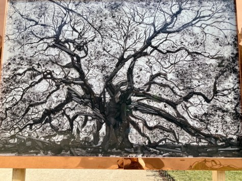 Image of shadows and tree using scraps of charcoal