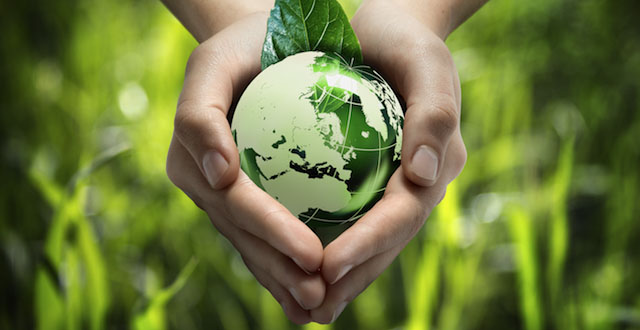 Sauvons la planète en 6ème