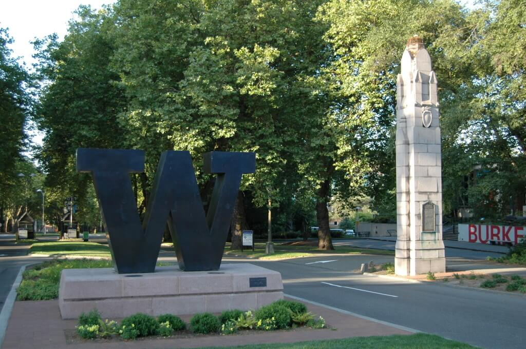 Top 10 Twitter Accounts Every Husky Should Follow College Magazine