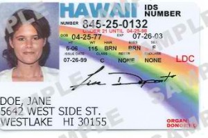 5. Novelty ID Cards-theexplode