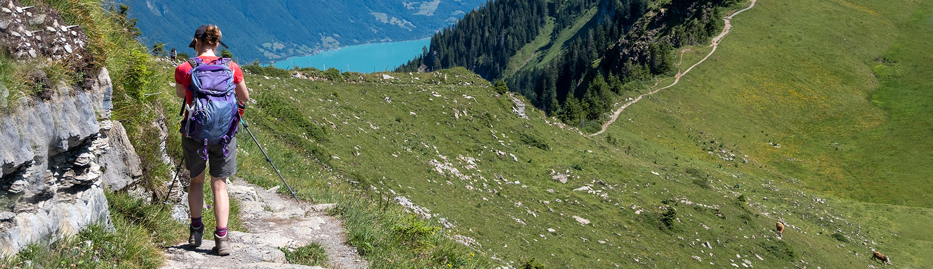 Walking Holidays in the Swiss Alps