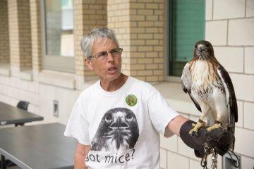 Blackland Prairie Raptor Center presenter and falcon