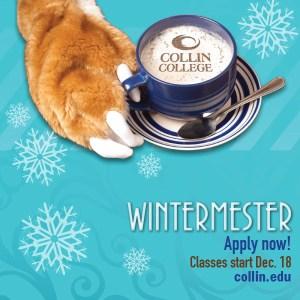 Wintermester. Apply Now.