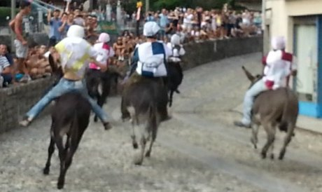 Col20160815_180430_Piazza Bolzani(1)Coll13
