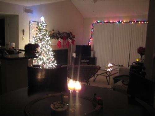 xmasdecorations13