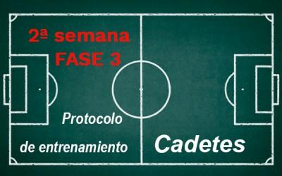 Semana 2 FASE 3 Protocolo de entrenamiento en fases de desescalada para la categoría de CADETES