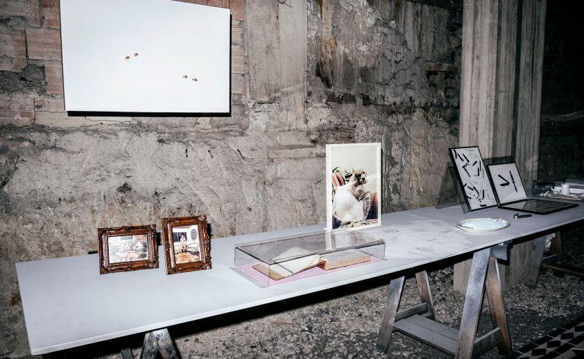 El Dorado, espacio de arte y critica social