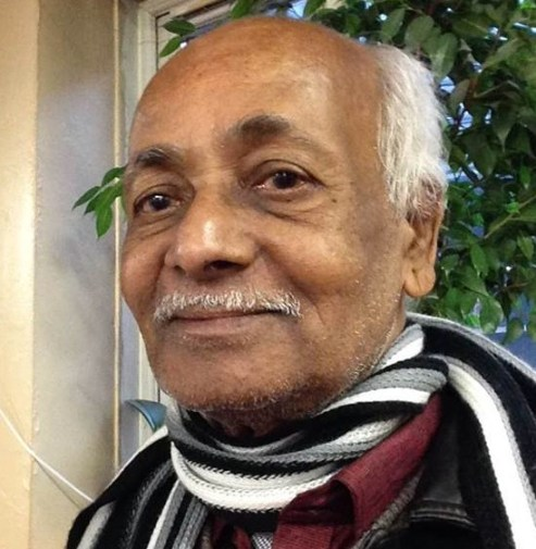 M. V. Kaanamylnathan