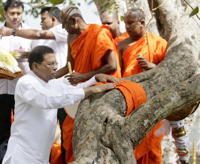 Maithri Sri Maha Bodhi
