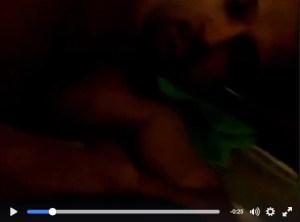 srilankan-airlines-porn-video