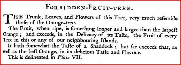 forbiddenfruit1750barbados