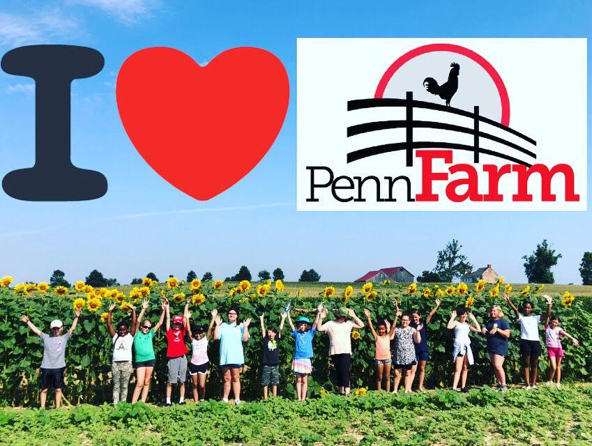 الزراعة المدعومة من المجتمع - اشترك في صيف 2021 مفتوح الآن!