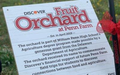 Penn Çiftliğinde Meyve Bahçesi Adanması ve Ağaç Dikimi
