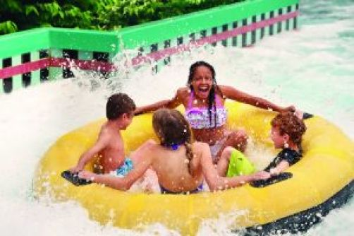 DSC 6403 163129 300x200 - Busch Gardens Water Country Usa Season Passes