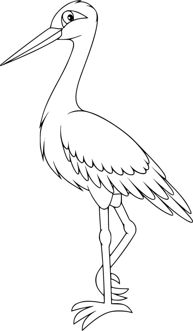 Coloriage cigogne à imprimer