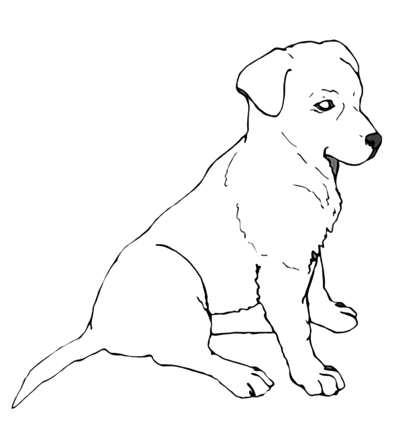 free labrador puppies coloring pages puppy coloring pages 3