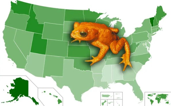 a frog on the map if the U,S,