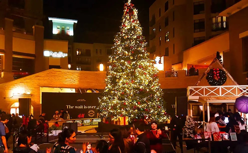 Community Christmas Trees Tradition Started In Pasadena