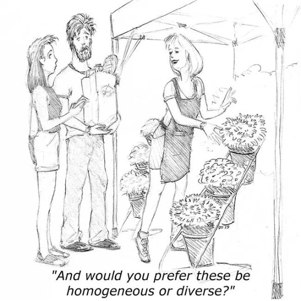 A husband and wife shopping for flowers and saleswoman asks if they prefer homogeneous or diverse flowers