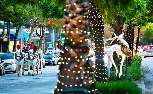 Lighted palm trees and a horse Carriage in the middle of a street