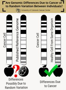 genomic-differences