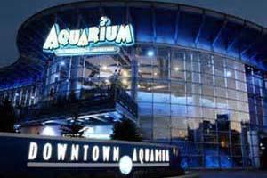 Denver-Aquarium-300x200