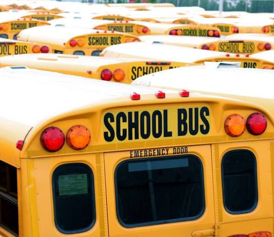 Tell us about your experience with busing in Denver schools