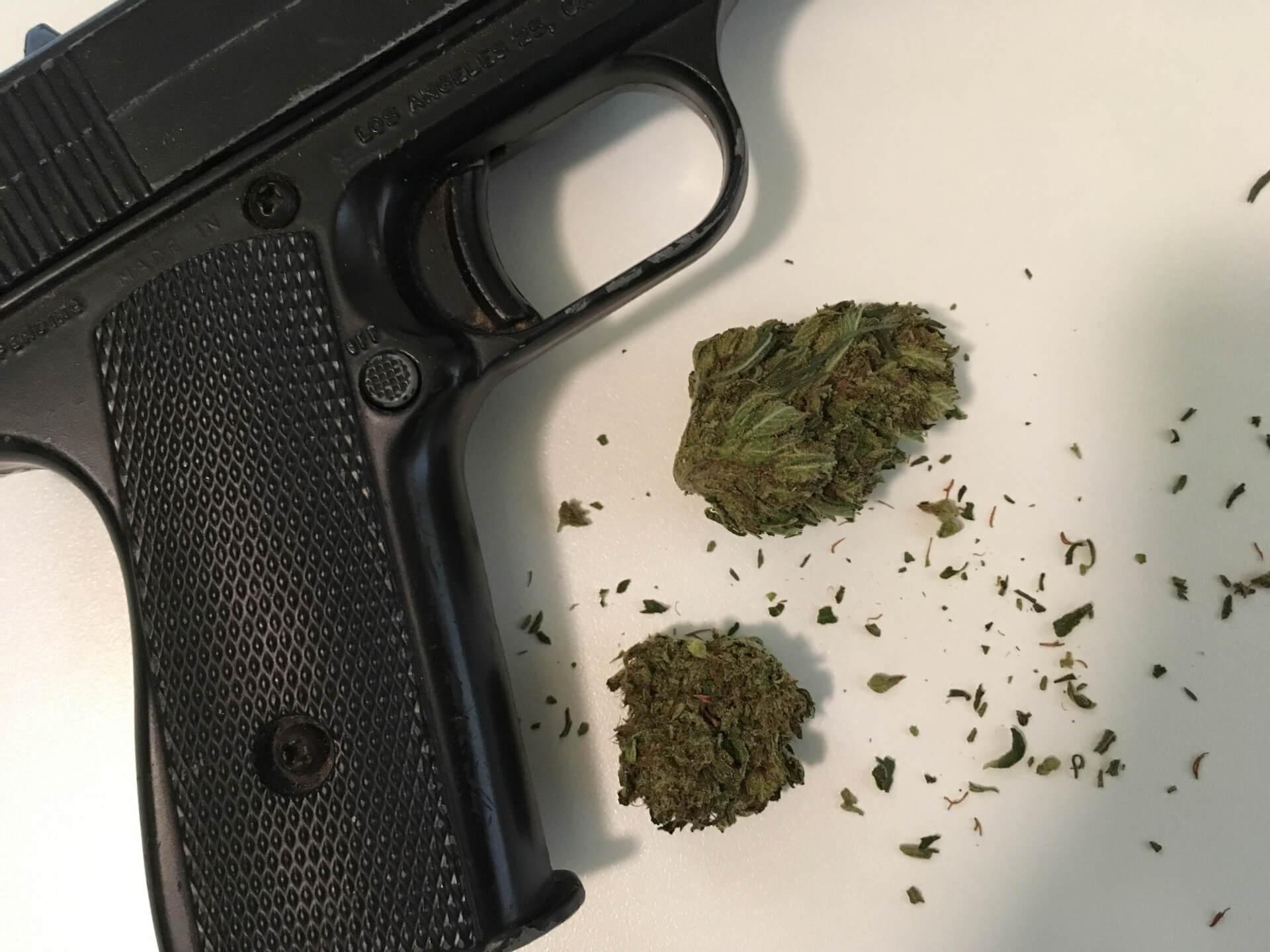 Can You Own A Gun In Colorado If You Smoke Pot The Colorado