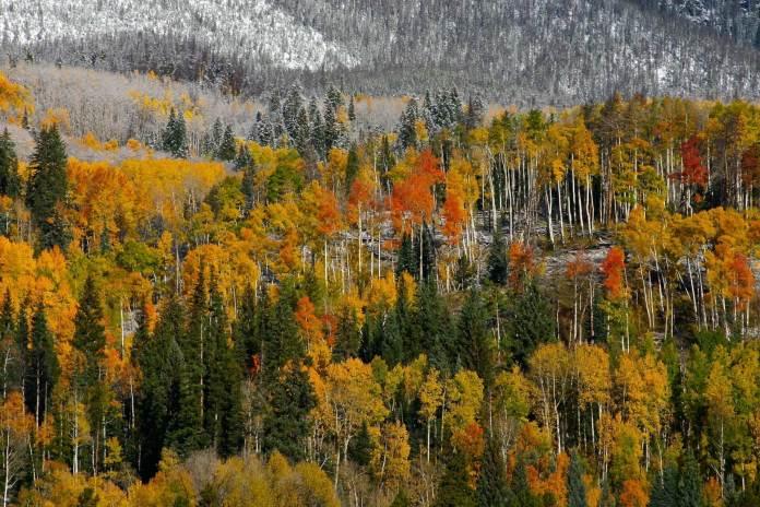 Colorado first snow