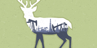 Oil and gas land managment must accommodate wildlife and growth