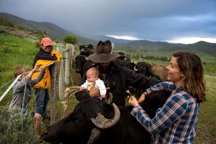 Miranda, joined by his mother, stepson, and partner, Erin Cuseo, holds his and Cuseo's newborn son, Wekta. The buffalos are extremely affectionate toward him and his family. (Luna Anna Archey/High Country News)