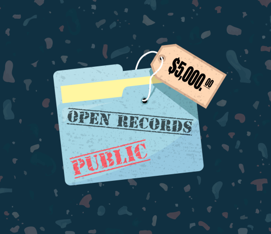 Guest Post: The people's fight for open government