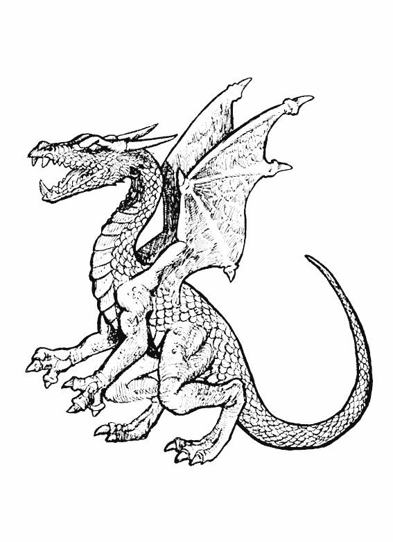 Coloriage Dragon Gratuit A Imprimer