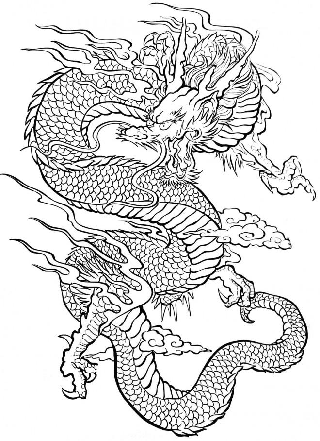 Coloriage Dragon Difficile Pour Adulte Dessin Gratuit A Imprimer